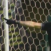 Botafogo emplaca quatro jogadores na seleção da rodada da Série B