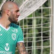 Contrato do Botafogo com Fernandão prevê aumento salarial de 4x em 2022, mas com valores inferiores aos pedidos por Navarro