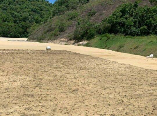 Grama de campo do novo CT do Botafogo começa a ser plantada; previsão de 45 dias
